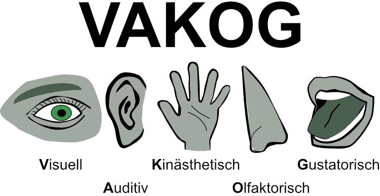 VAKOG -Akronym: Visuell, Audio, Kinestäthisch, Olfaktorisch, Gustatorisch